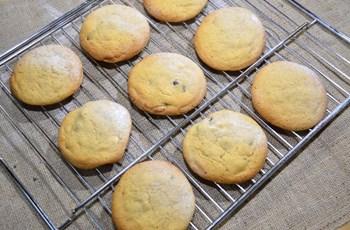 Kızılcık Kurulu Beyaz Çikolatalı Cookie