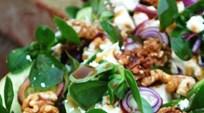Reyhan Soslu Tütsülenmiş Keçi Peyniri ve Semizotu Salatası